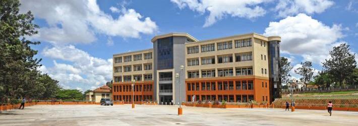 Excel Construction Ltd. Image